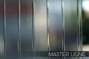 master_ligne